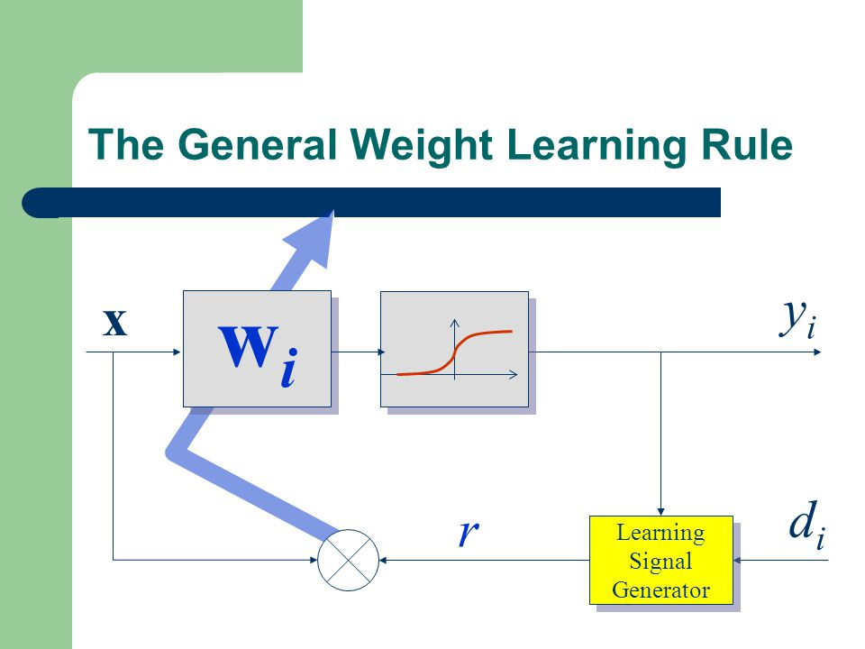 The General Weight Learning Rule