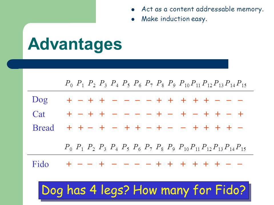 Advantages Dog has 4 legs How many for Fido + _ Dog Cat Bread + _ +