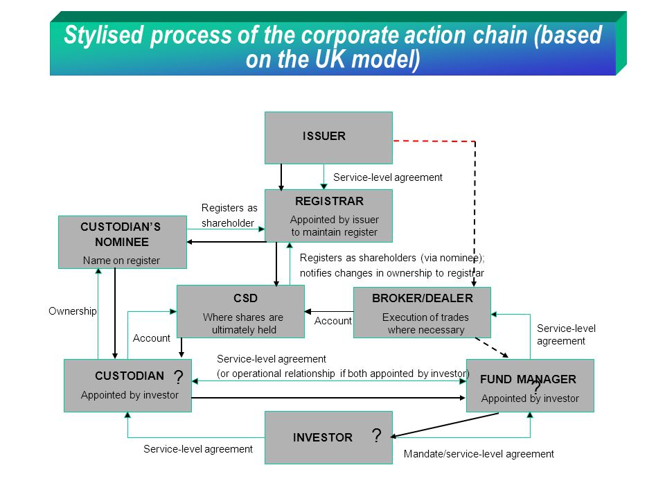 Stylised process of the corporate action chain (based on the UK model)