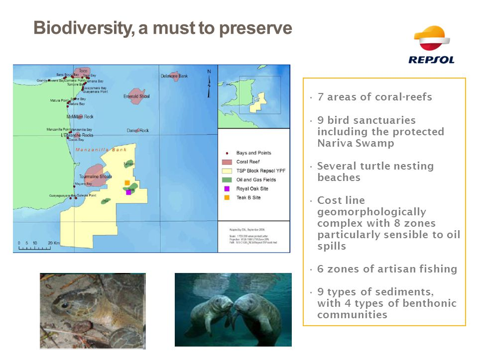 Biodiversity, a must to preserve