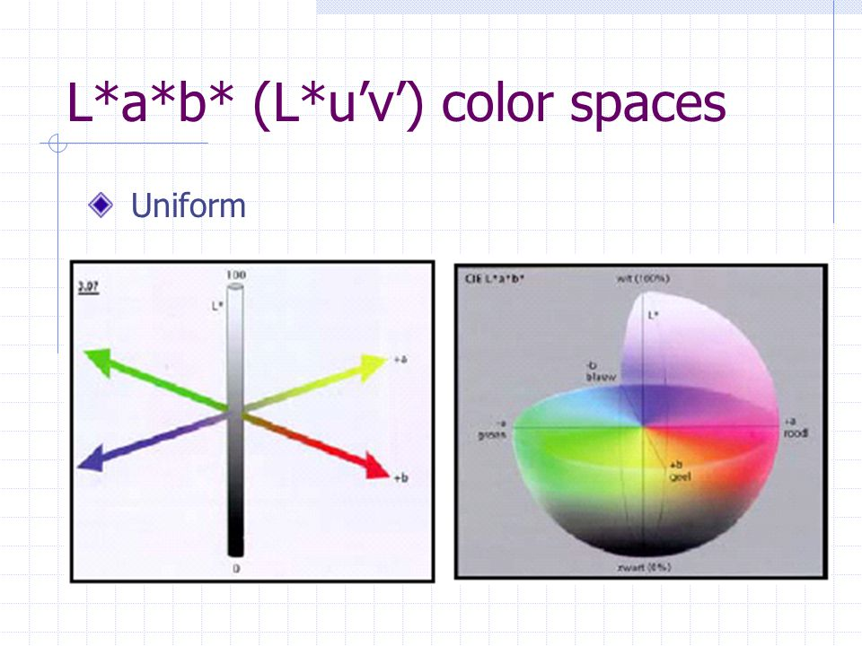 L*a*b* (L*u'v') color spaces