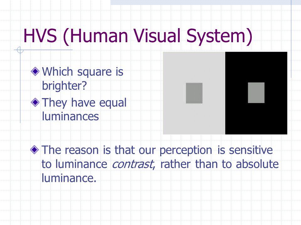 HVS (Human Visual System)