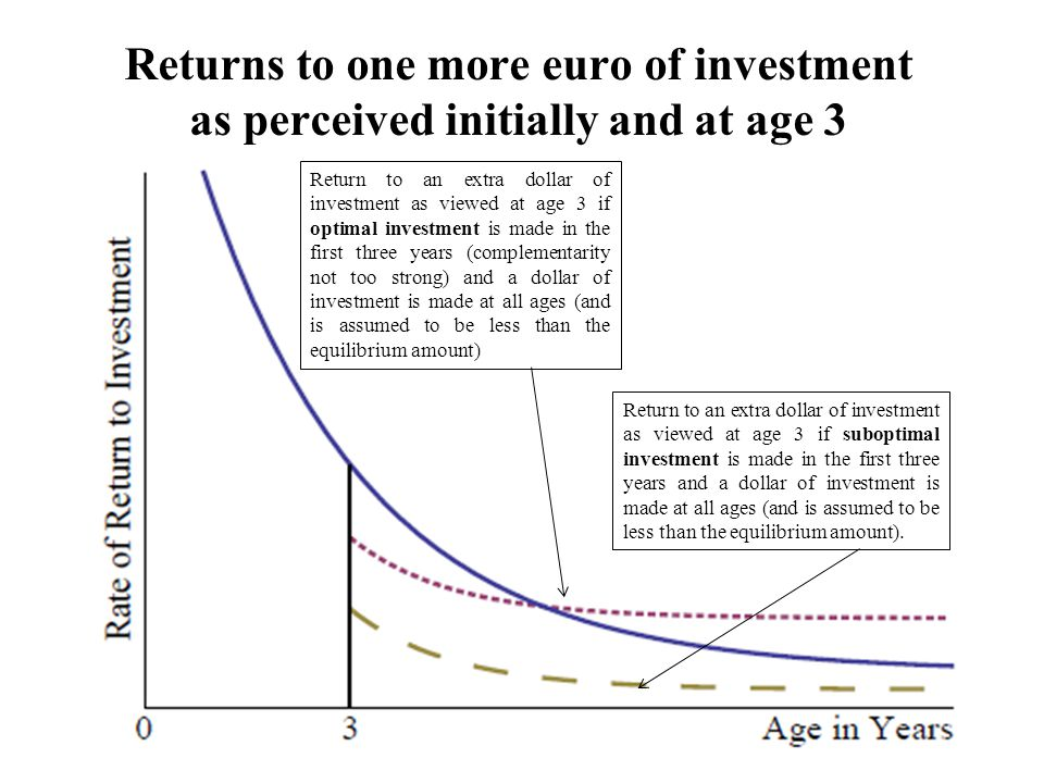 Returns to one more euro of investment as perceived initially and at age 3