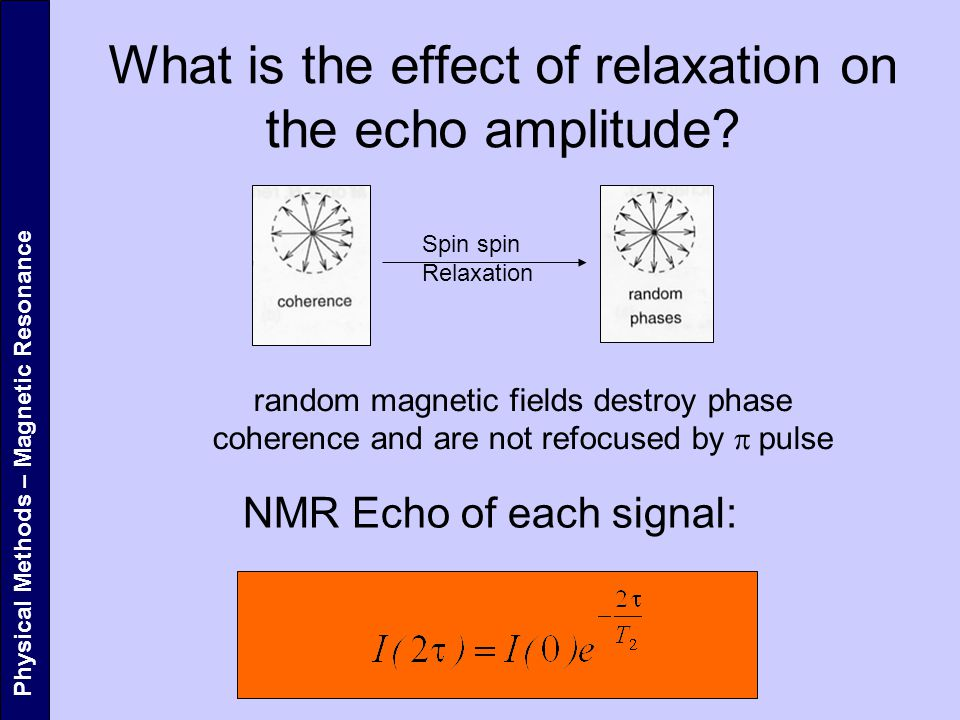 What is the effect of relaxation on the echo amplitude