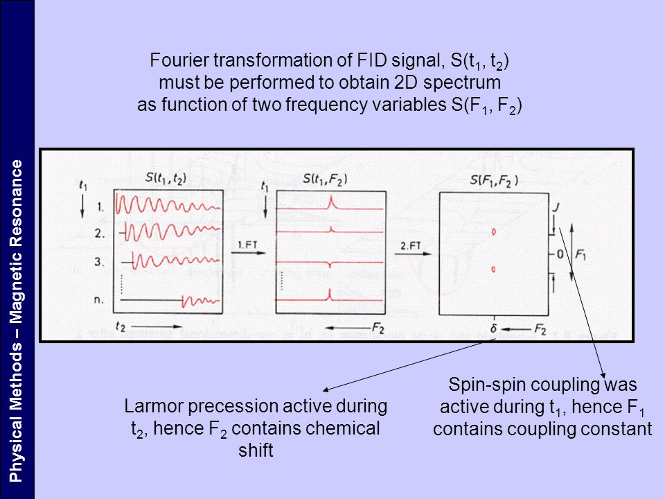 Fourier transformation of FID signal, S(t1, t2)
