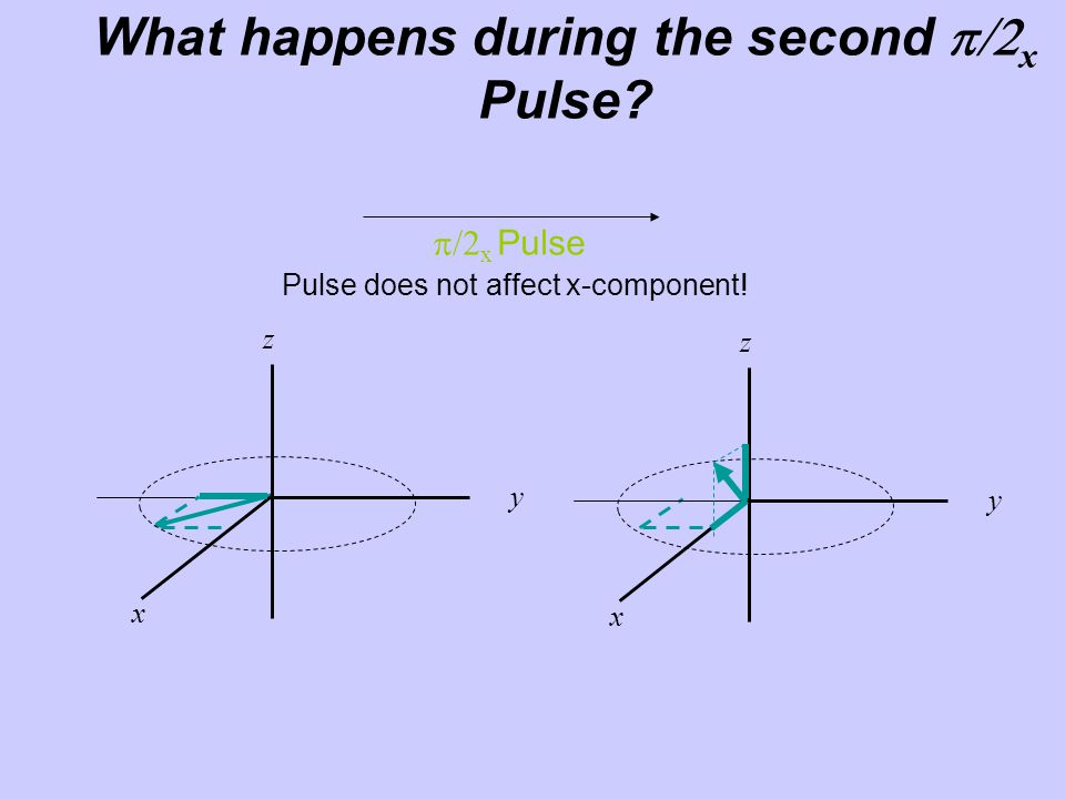 What happens during the second p/2x Pulse
