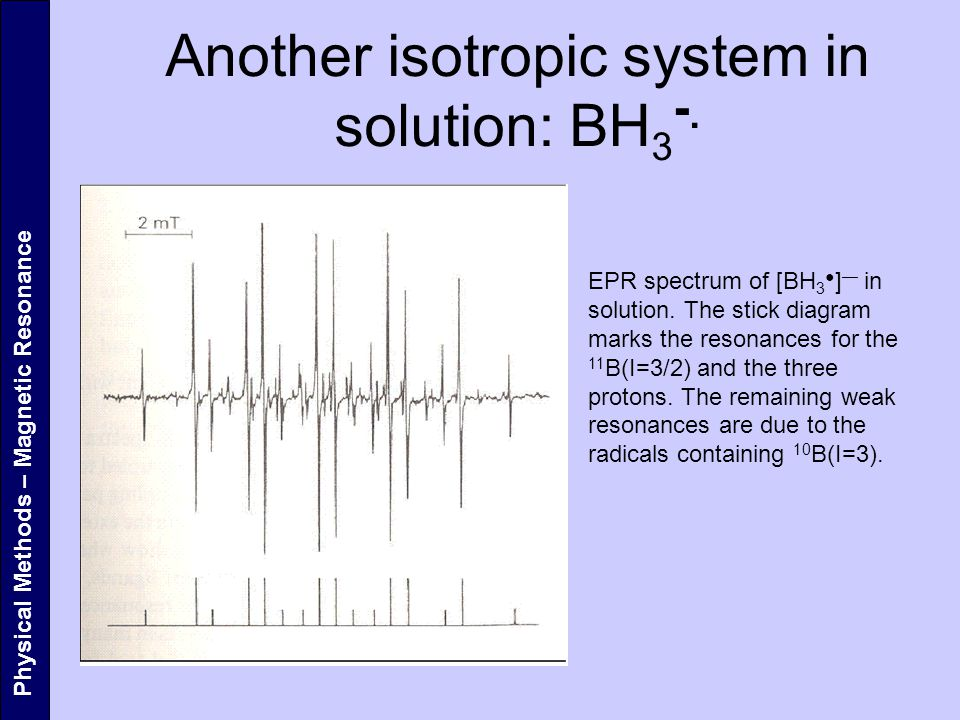 Another isotropic system in solution: BH3-.