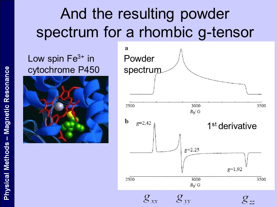 And the resulting powder spectrum for a rhombic g-tensor