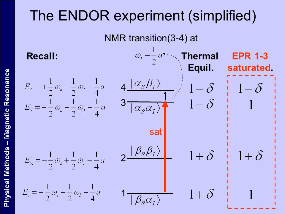 The ENDOR experiment (simplified)