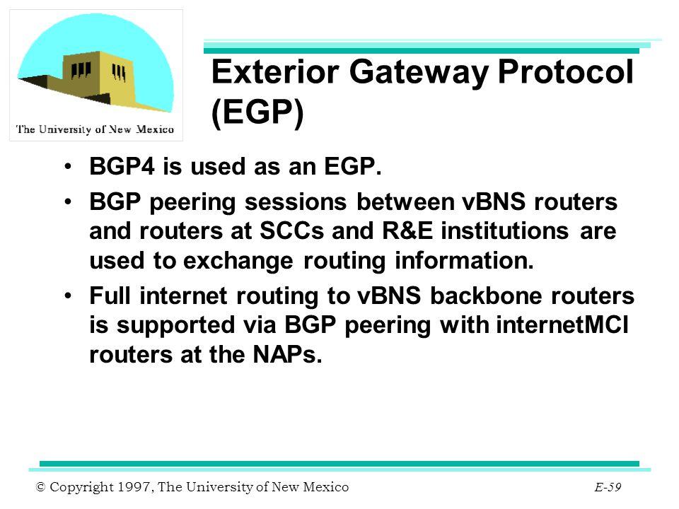 Exterior Gateway Protocol (EGP)