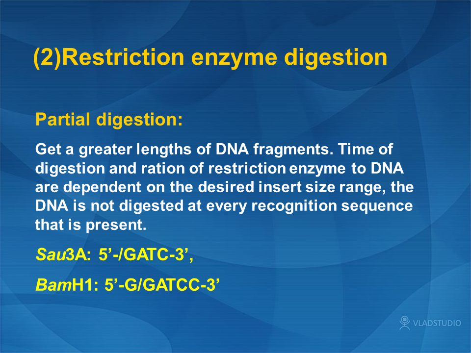 (2)Restriction enzyme digestion