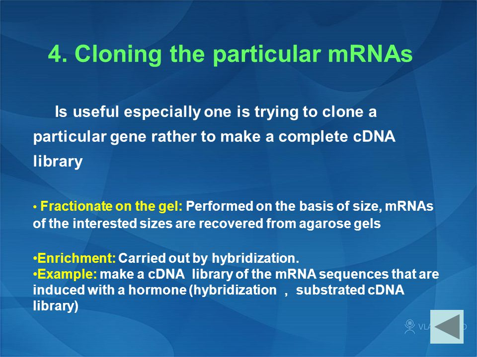 4. Cloning the particular mRNAs