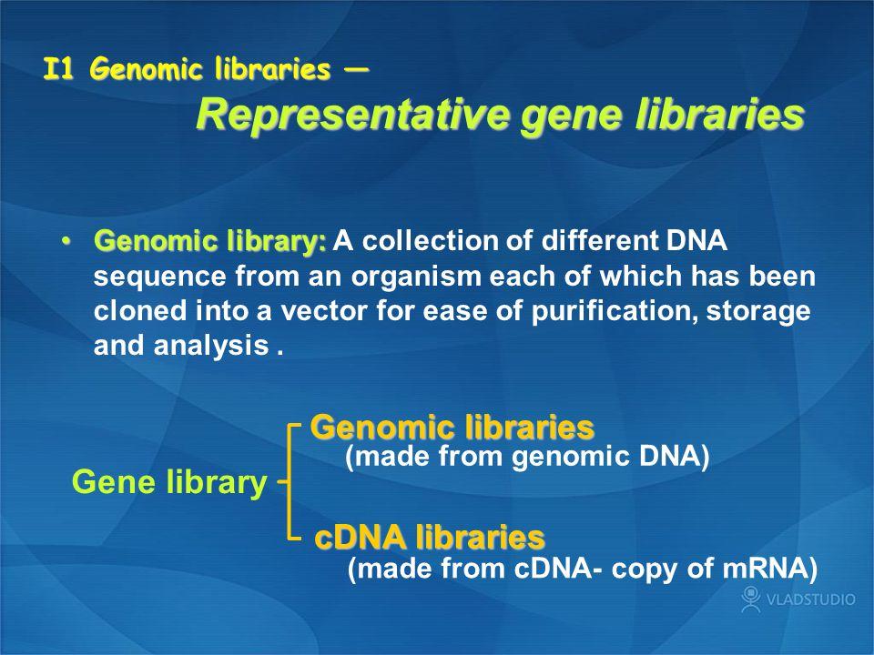 I1 Genomic libraries — Representative gene libraries
