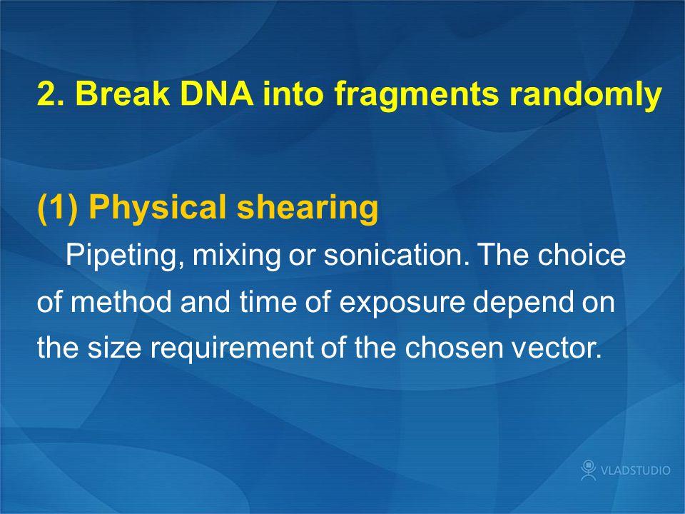 2. Break DNA into fragments randomly