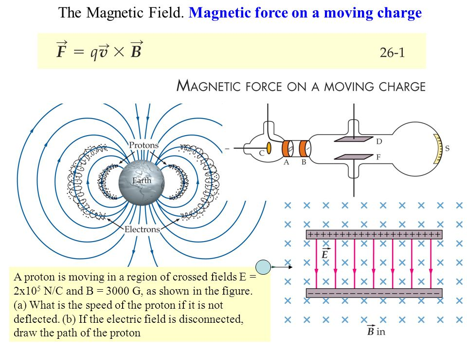 The Magnetic Field. Magnetic force on a moving charge