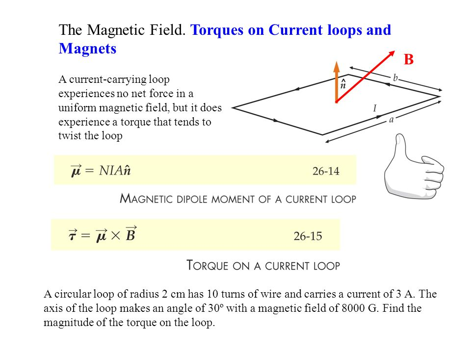 The Magnetic Field. Torques on Current loops and Magnets