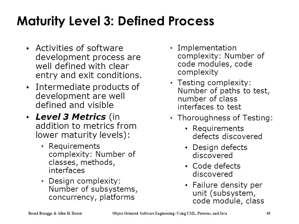 Maturity Level 3: Defined Process