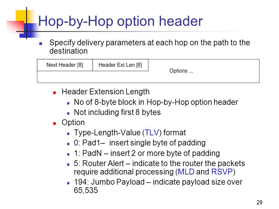 Hop-by-Hop option header