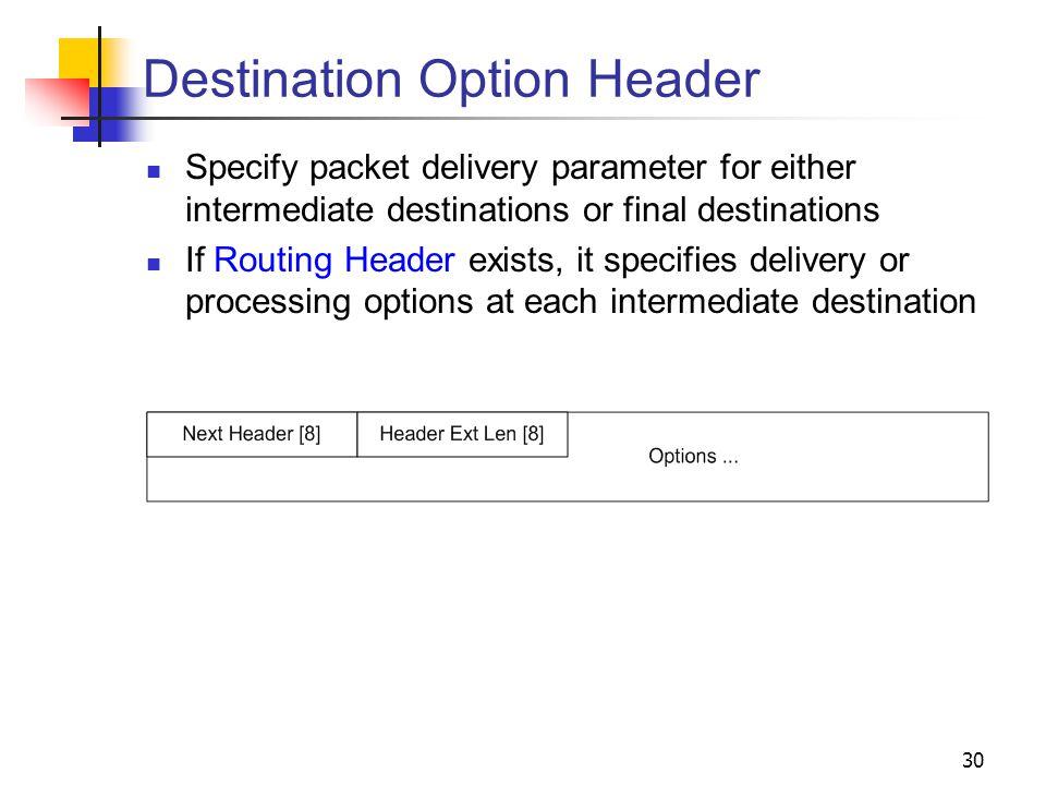 Destination Option Header