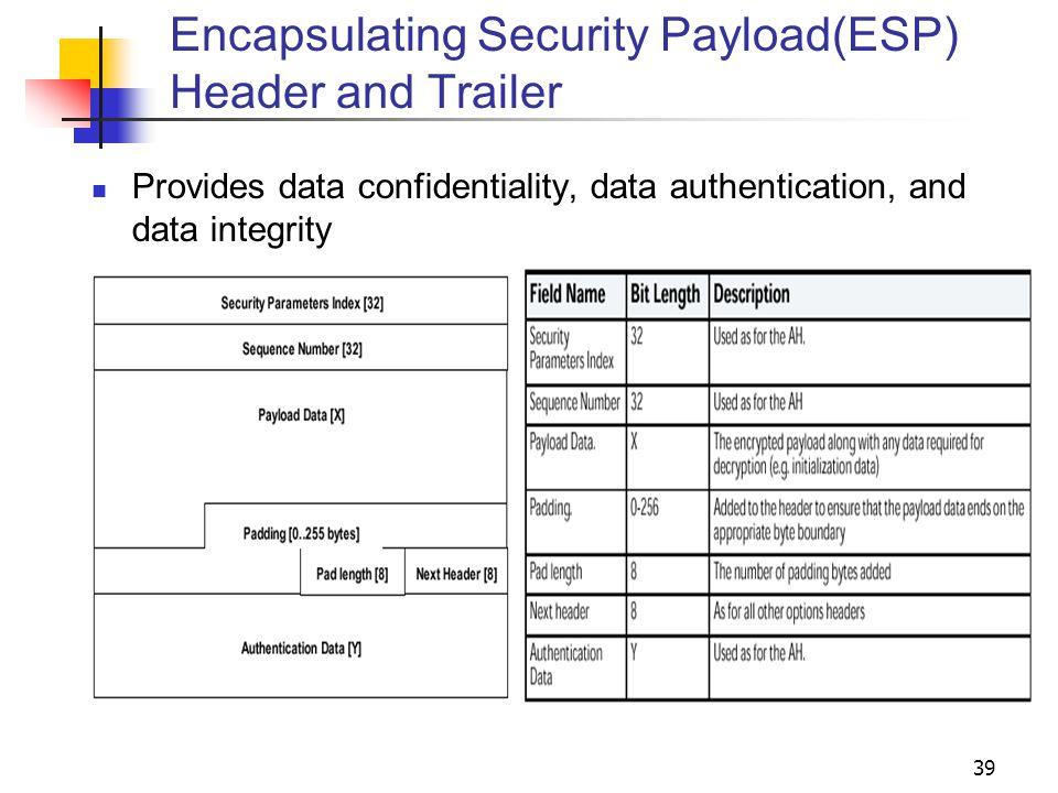 Encapsulating Security Payload(ESP) Header and Trailer