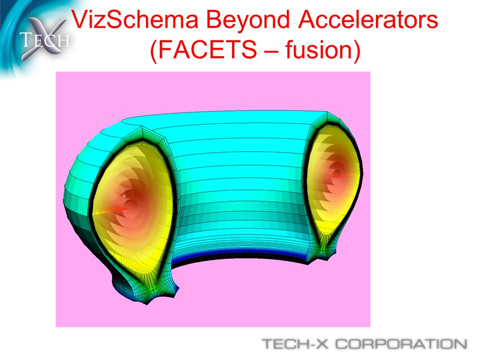 VizSchema Beyond Accelerators (FACETS – fusion)