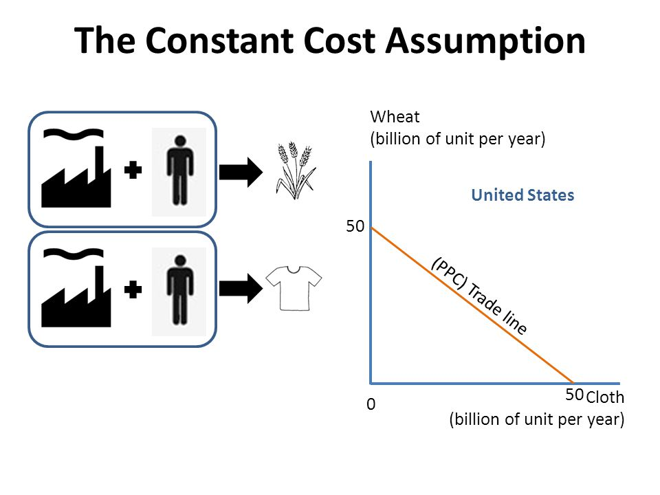 The Constant Cost Assumption