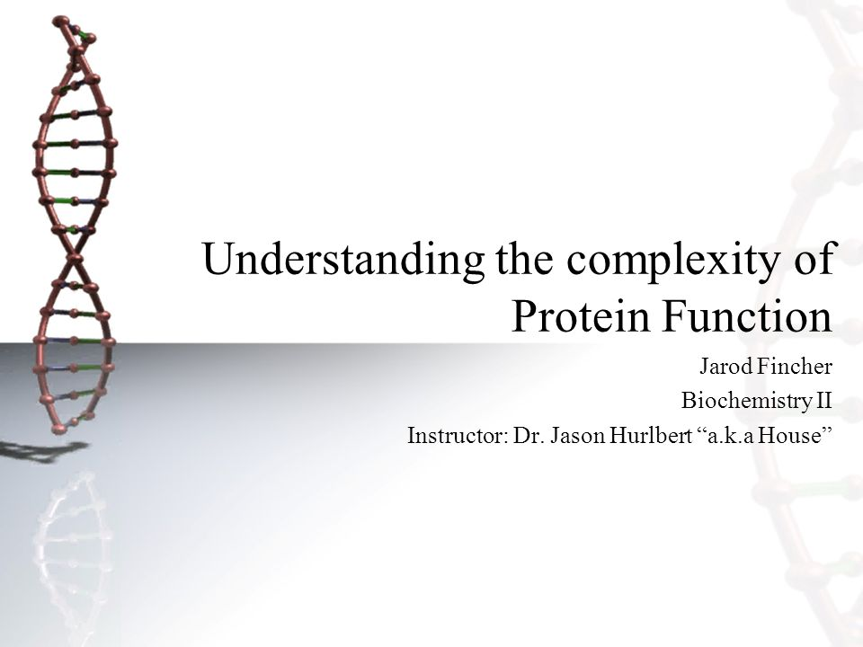 Understanding the complexity of Protein Function