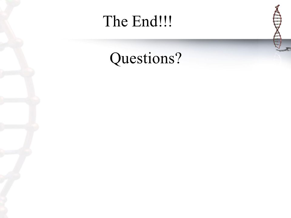 The End!!! Questions