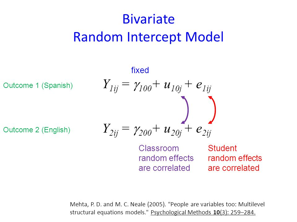 Bivariate Random Intercept Model