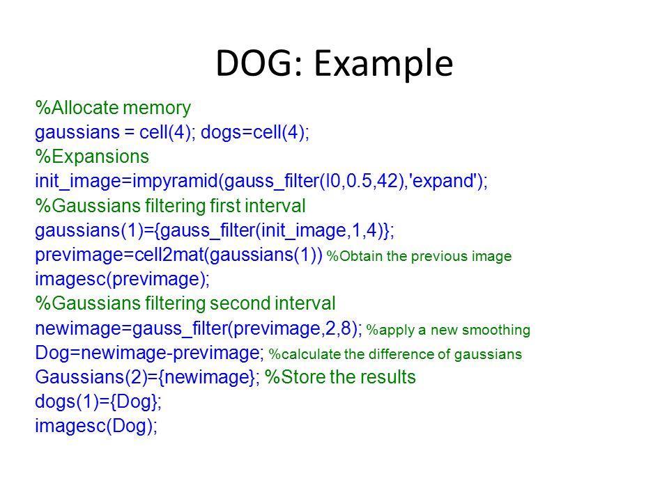 DOG: Example