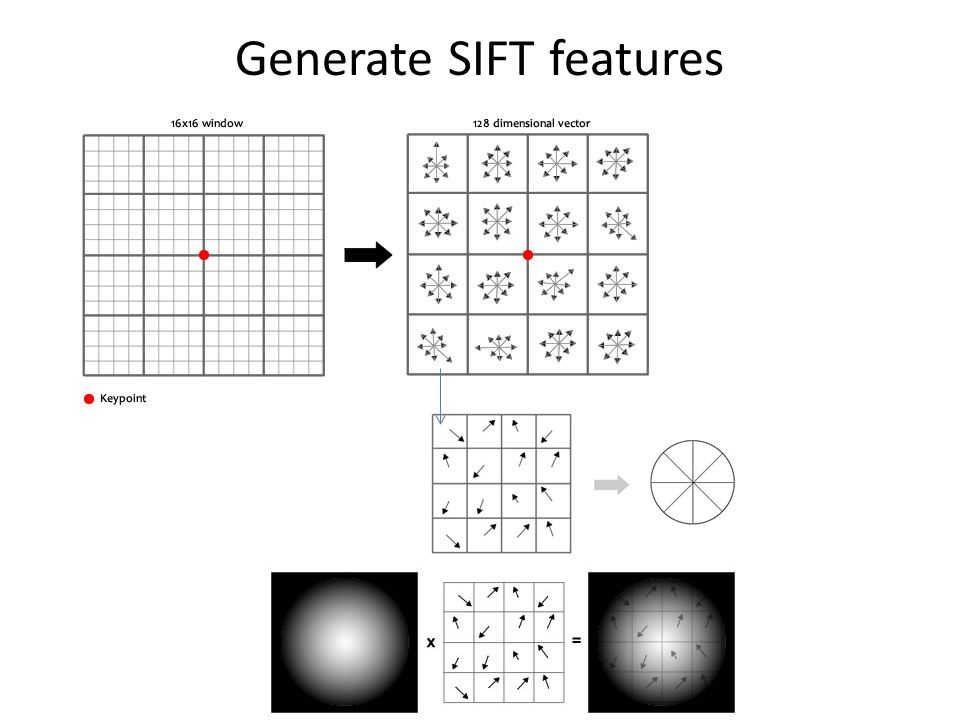 Generate SIFT features