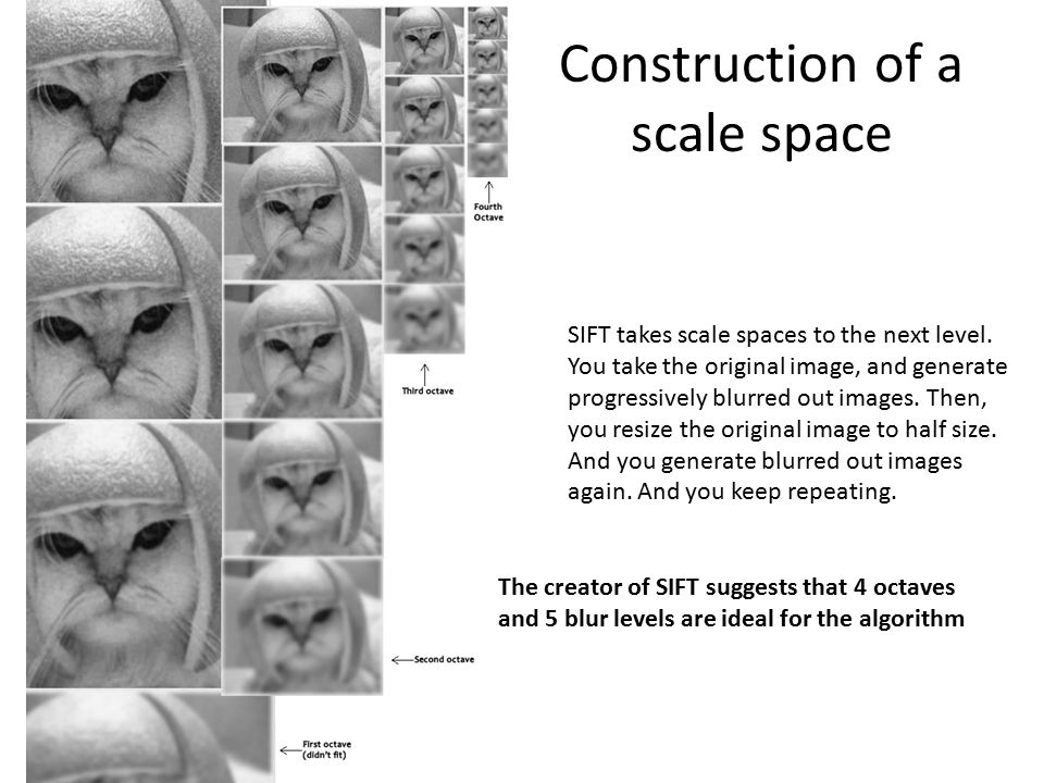 Construction of a scale space
