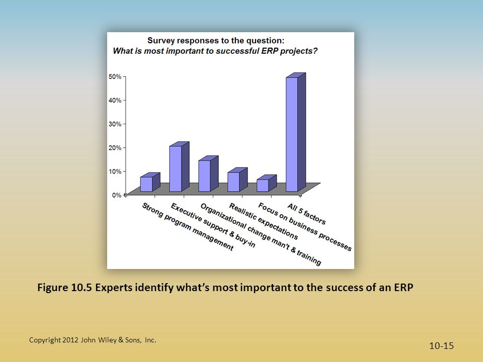 Figure 10.5 Experts identify what's most important to the success of an ERP