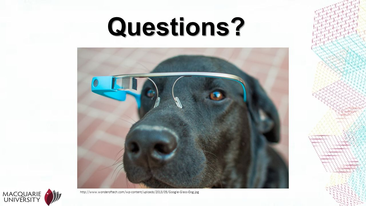 Questions http://www.wonderoftech.com/wp-content/uploads/2013/05/Google-Glass-Dog.jpg