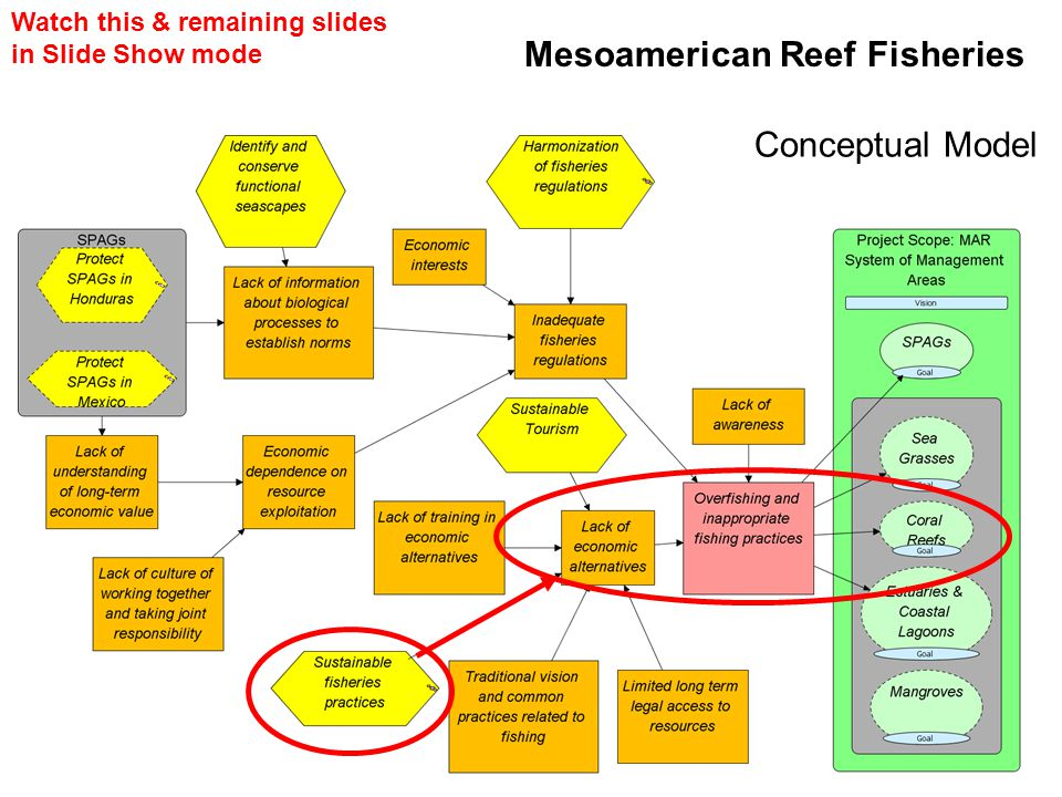 Mesoamerican Reef Fisheries