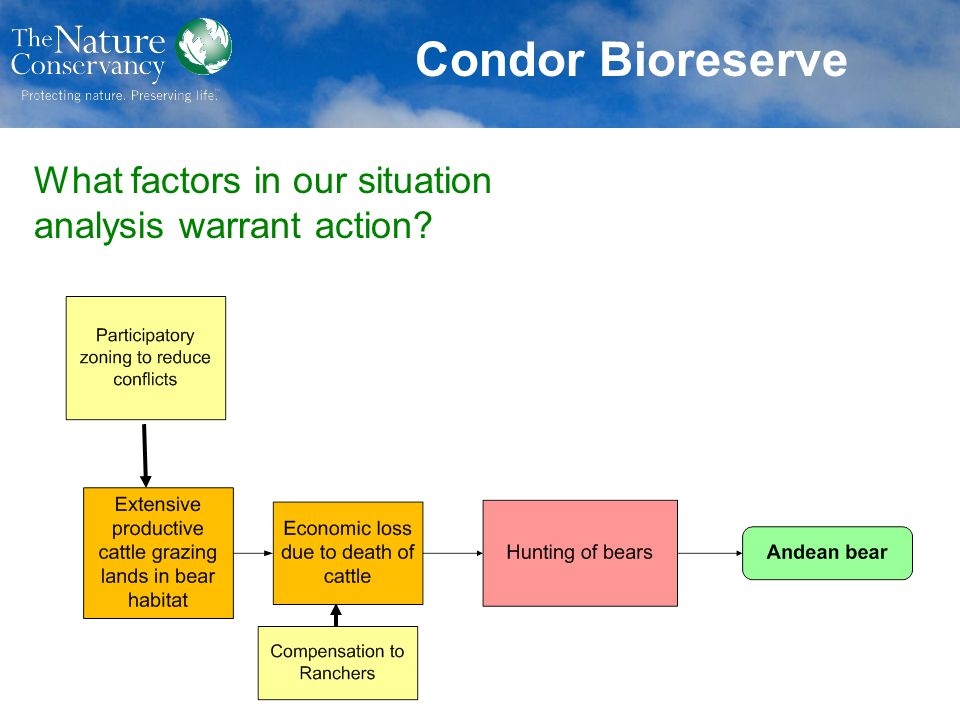 Condor Bioreserve What factors in our situation analysis warrant action