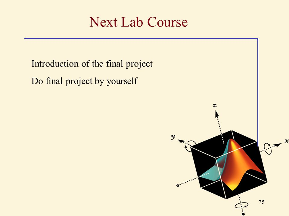 Next Lab Course Introduction of the final project