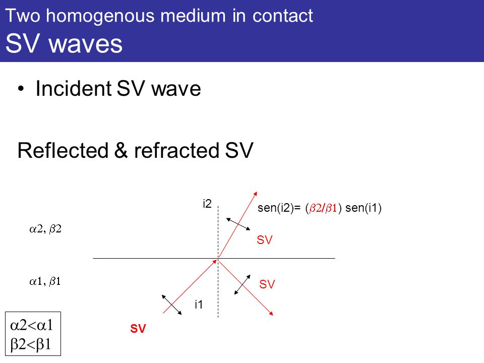 Two homogenous medium in contact SV waves