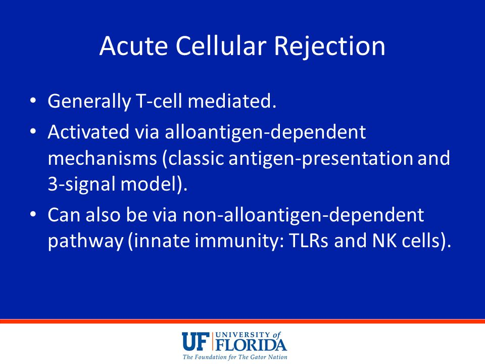 Acute Cellular Rejection