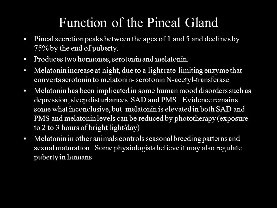 Function of the Pineal Gland