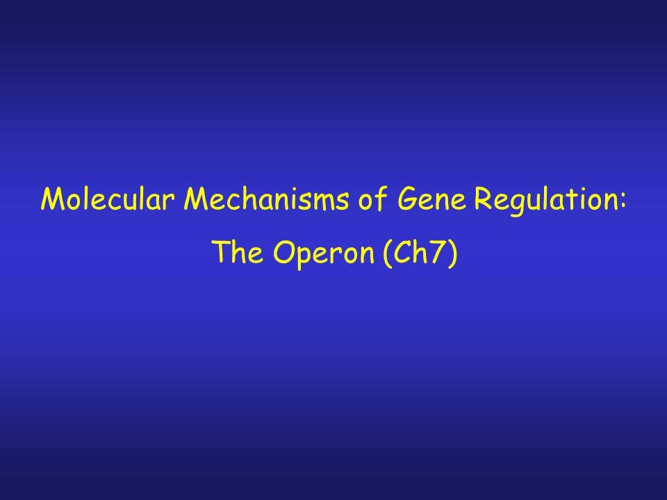Molecular Mechanisms of Gene Regulation: