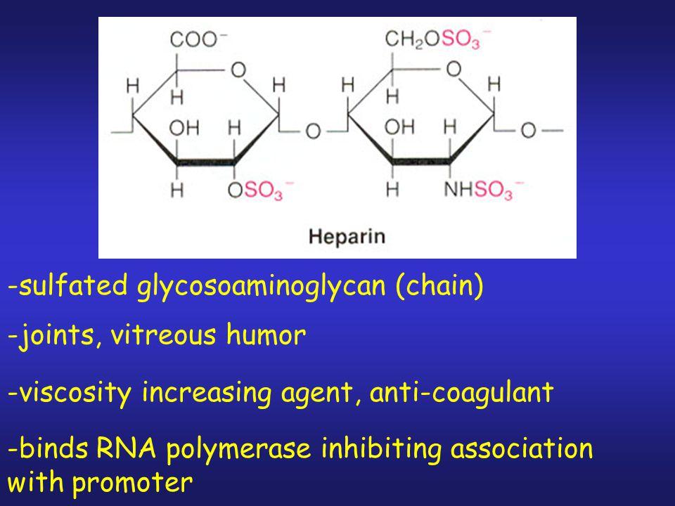 -sulfated glycosoaminoglycan (chain)