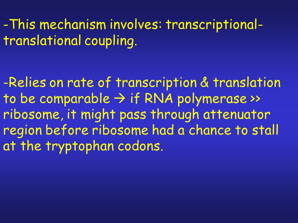 -This mechanism involves: transcriptional-translational coupling.