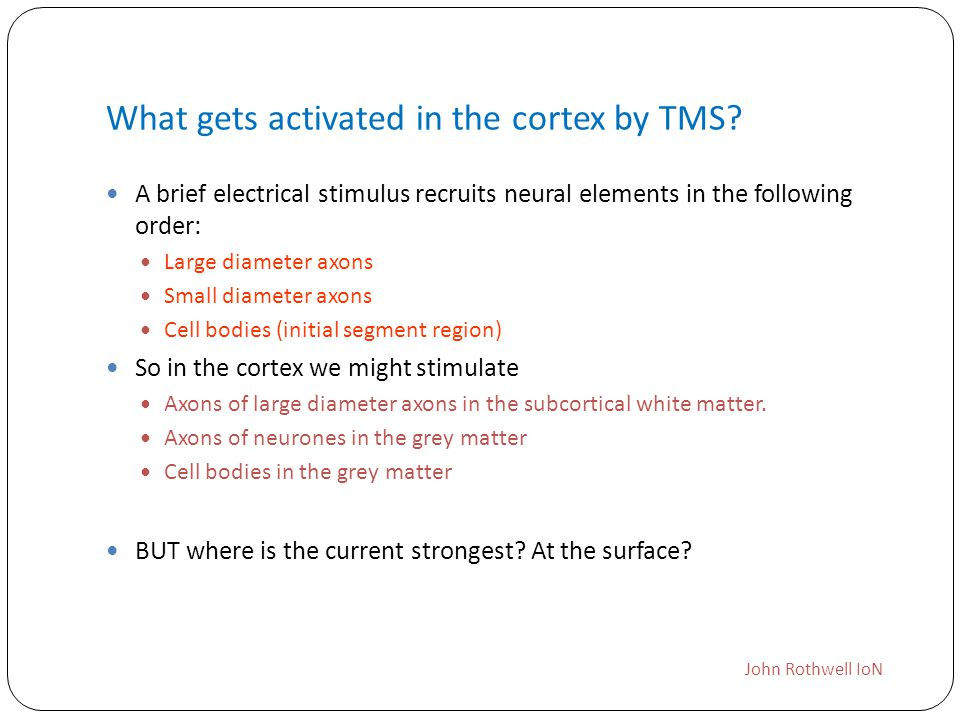 What gets activated in the cortex by TMS
