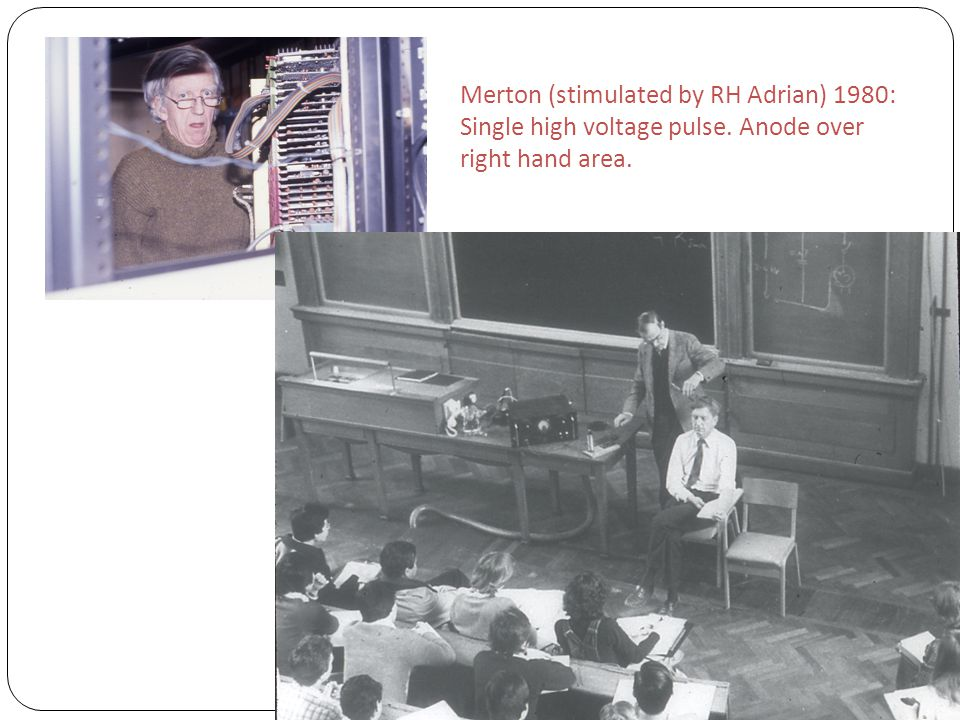 Merton (stimulated by RH Adrian) 1980: