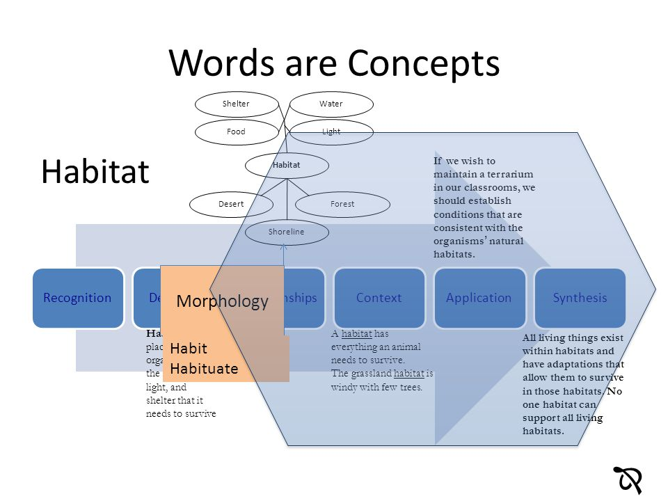 Words are Concepts Habitat  Morphology Habit Habituate Recognition