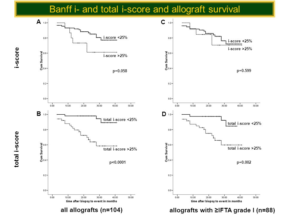 Banff i- and total i-score and allograft survival