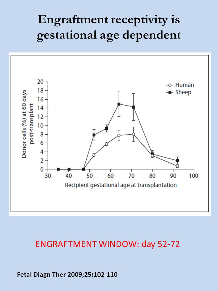 Engraftment receptivity is gestational age dependent