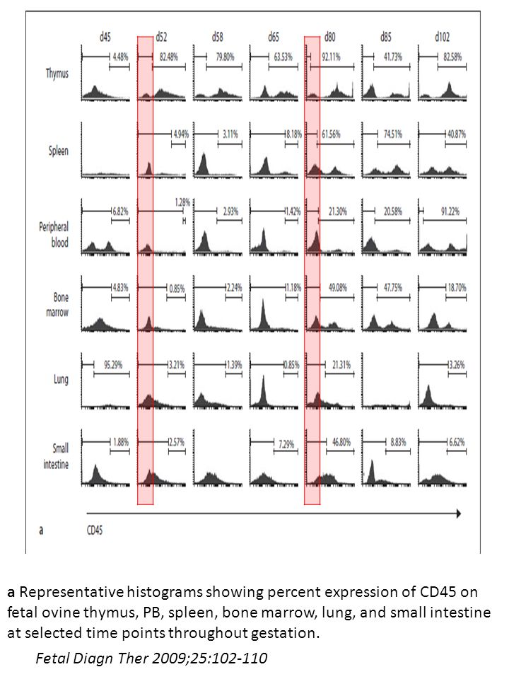 a Representative histograms showing percent expression of CD45 on fetal ovine thymus, PB, spleen, bone marrow, lung, and small intestine