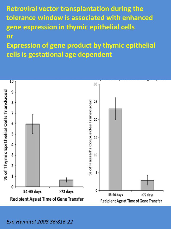 Retroviral vector transplantation during the tolerance window is associated with enhanced gene expression in thymic epithelial cells